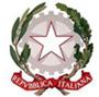 Istituto Comprensivo 66 Martiri - Grugliasco logo
